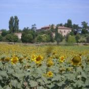 Tuscany-028